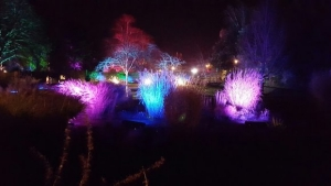 rsz_enchanted_park_4