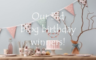 3rd blog birthday winners