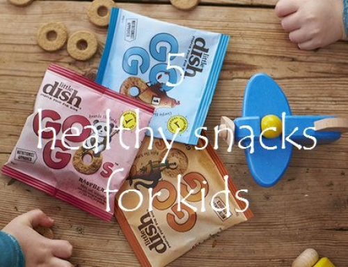 5 healthy snacks for kids & Little Dish prize giveaway!