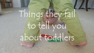Things they fail to tell you about toddlers