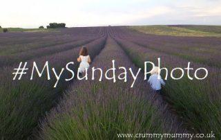 #MySundayPhoto45 main