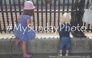 #MySundayPhoto47 main
