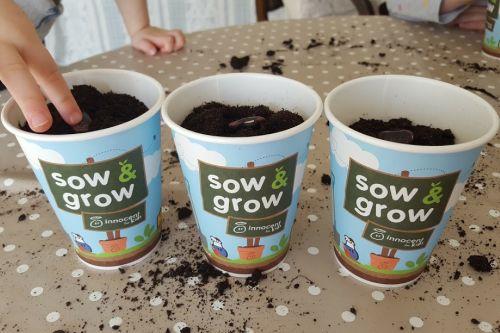 #sowandgrow3