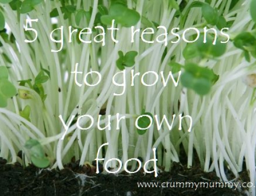 5 great reasons to grow your own food #ad
