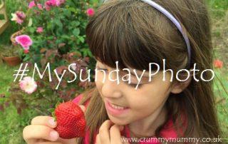 #MySundayPhoto90 main