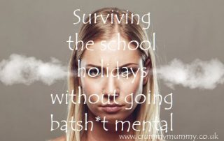 Surviving the school holidays without going batsh*t mental