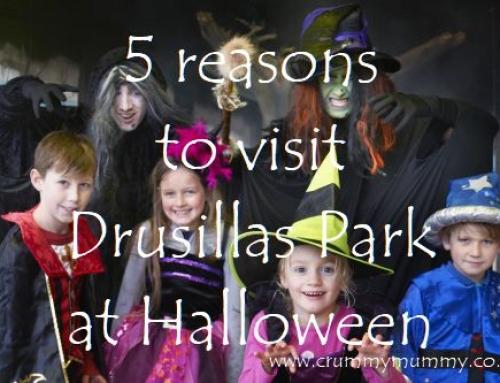 5 reasons to visit Drusillas Park at Halloween