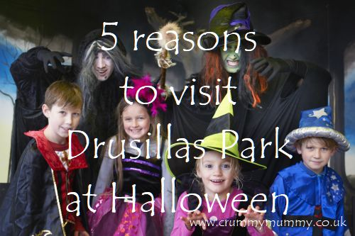5 reasons to visit Drusillas Park at Halloween