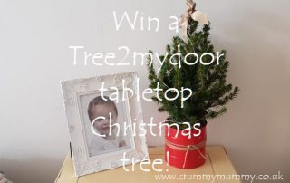 Win a Tree2mydoor tabletop Christmas tree