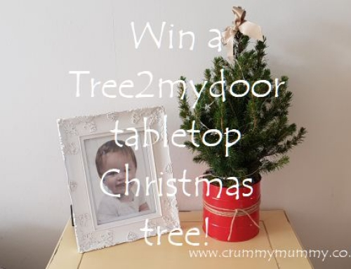 Win a Tree2mydoor tabletop Christmas tree!