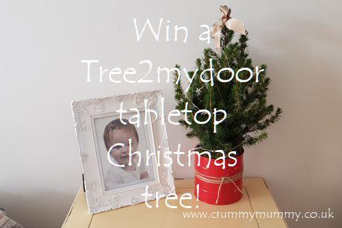 Win a Tree2mydoor tabletop Christmas tree
