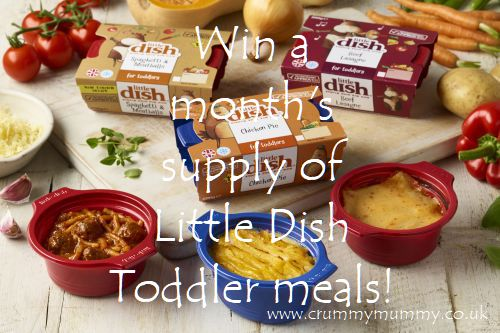 Win a month's supply of Little Dish toddler meals