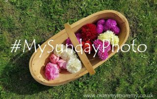 #MySundayPhoto159 main