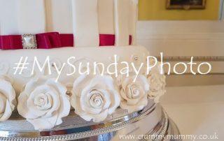 #MySundayPhoto162 main