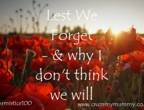 Lest We Forget – & why I don't think we will