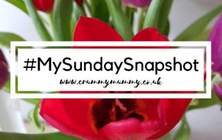 #MySundaySnapshot 5