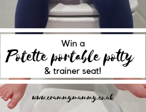 Win a Potette portable potty & trainer seat!