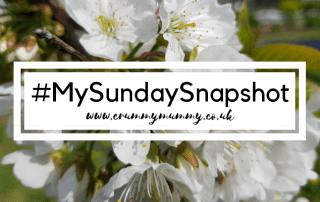 #MySundaySnapshot 17 main