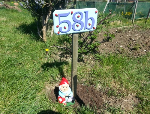Our big allotment challenge! (with a little help from Aldi)