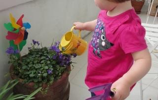 gardenerinthemaking