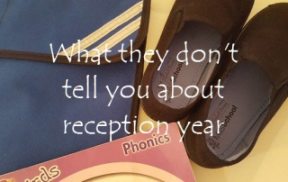 What they don't tell you about reception year featured