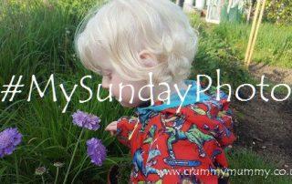 #MySundayPhoto38 featured