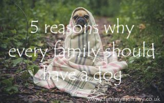 5 reasons why every family should have a dog
