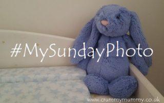 #MySundayPhoto73 main