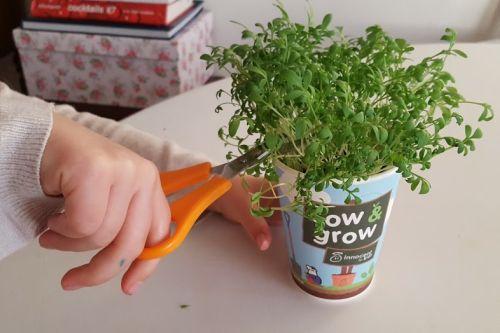 Fun ways to get kids to eat more veg