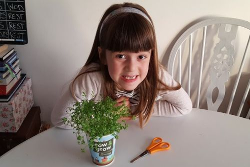 Fun ways to get kids to eat more veg