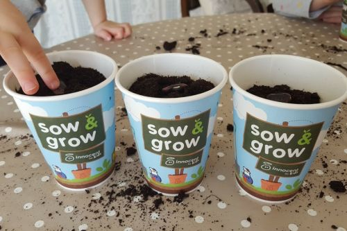 5 great reasons to grow your own food 1