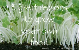5 great reasons to grow your own food
