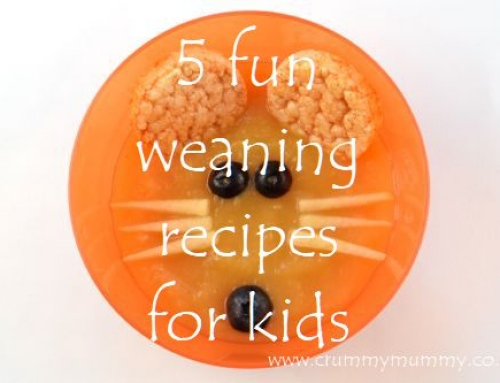 5 fun weaning recipes for kids