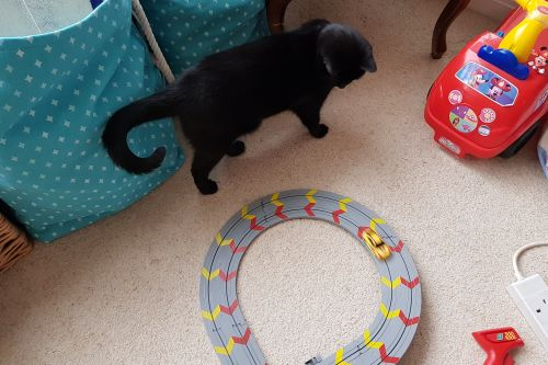 My First Scalextric review 10