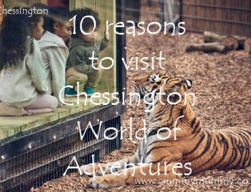 10 reasons to visit Chessington World of Adventures