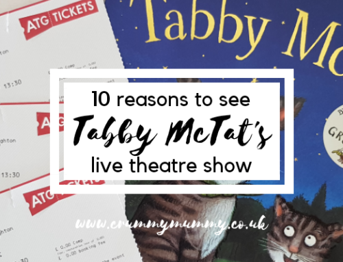 10 reasons to see Tabby McTat's live theatre show