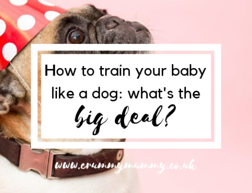 How to train your baby like a dog: what's the big deal?