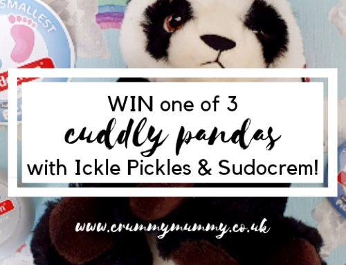 WIN one of 3 cuddly pandas with Ickle Pickles & Sudocrem!