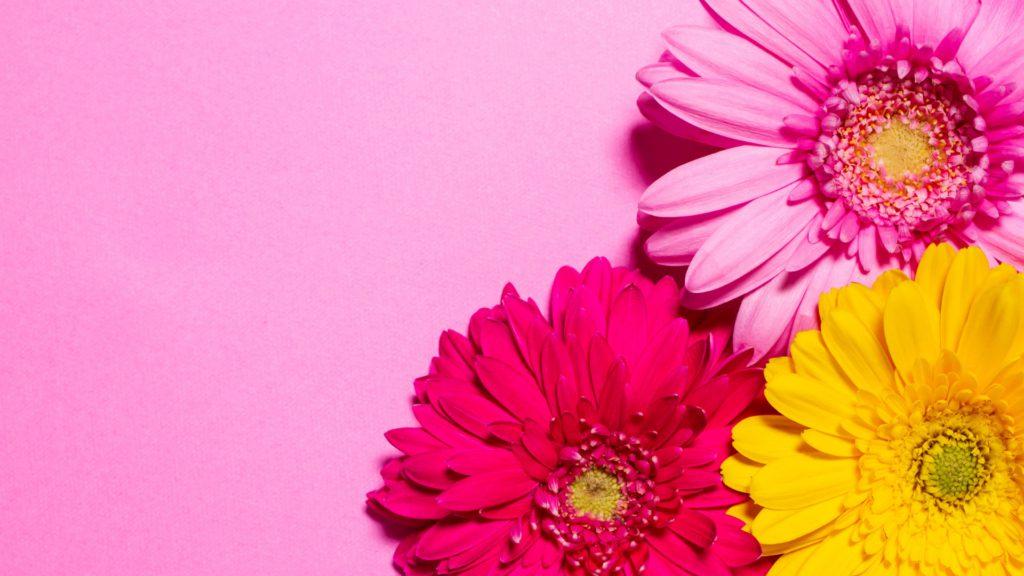 flower na,mes